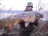 carpfishing-winter-04_1