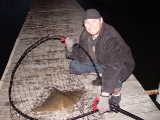 Carp pics and more_9