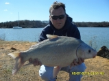 Grapevine lake Buffalo_5