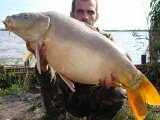 carp fishing in romania_6