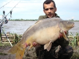 carp fishing romania_4